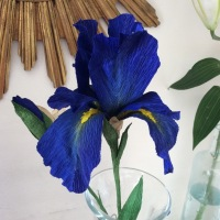IRIS BLUE paper