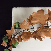 LIERRE feuilles parchemin