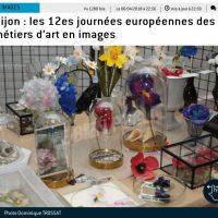 Journées Européennes des Métiers d'Art 2018Fleurs AM*F en soie et papier
